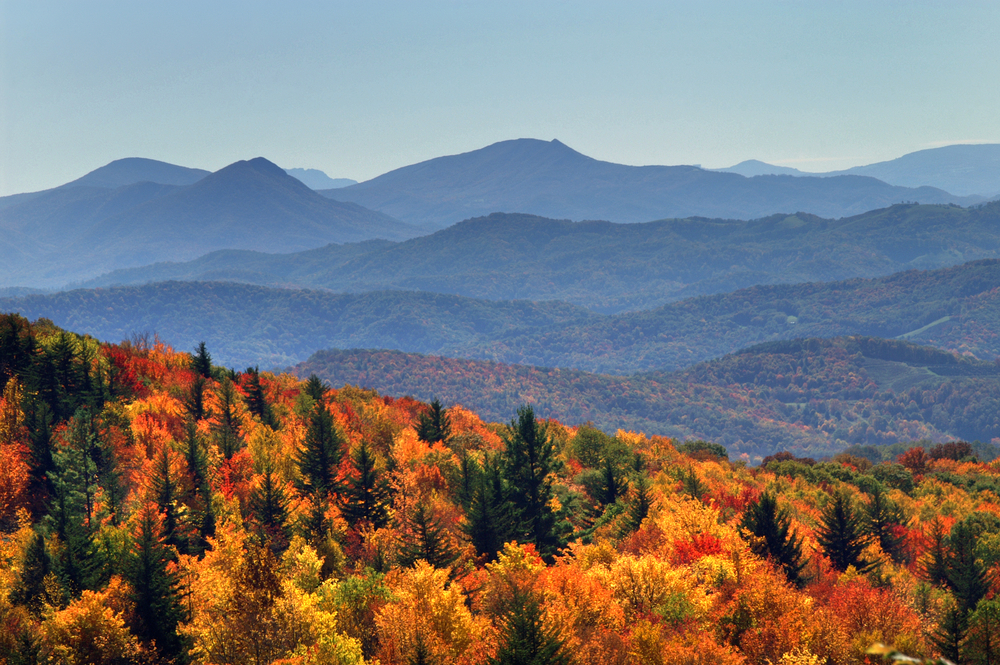 5 North Carolina Hikes Worth Taking This Fall