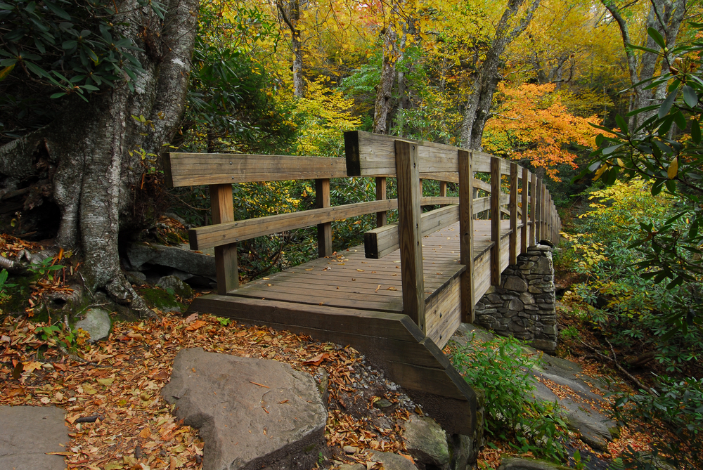 5 Stunning Fall Hikes in the North Carolina Piedmont Region