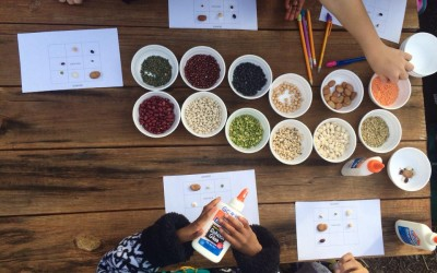 FoodCorps North Carolina: Growing Healthier Kids One Bite at a Time