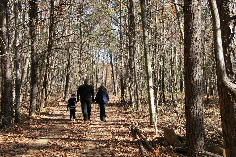 5 Easy Hiking Escapes in the North Carolina Triad