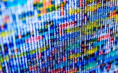 Anthem Cyber Attack Update and North Carolina Impacts