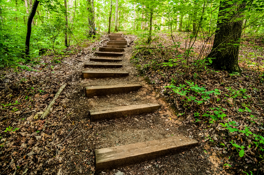 5  Short North Carolina Hikes You Need to Take This Year