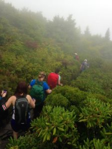 Tanawha Trail. Image: Joe Miller