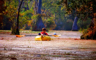 5 Picture Perfect Kayak and Canoeing Destinations in North Carolina