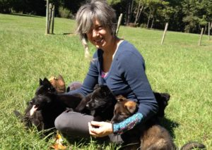 Puppies are a big part of Little Peep. Pictured with Marisa Shaw.