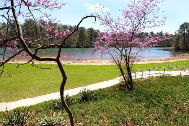 Image: NC Parks