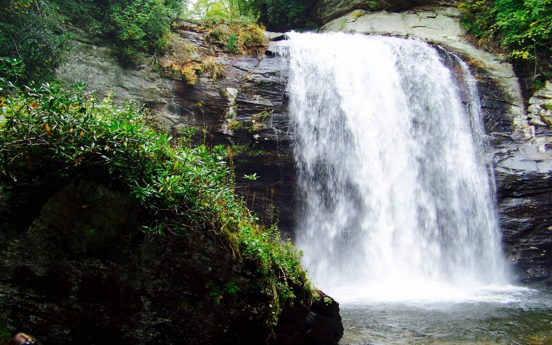 5 Sensational North Carolina Hikes Sure to Help You Cool Off