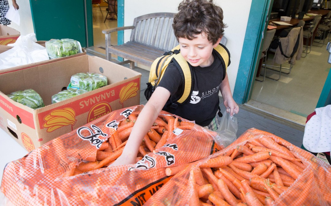 Food Bank Fights Hunger – and the Clock – in Western North Carolina