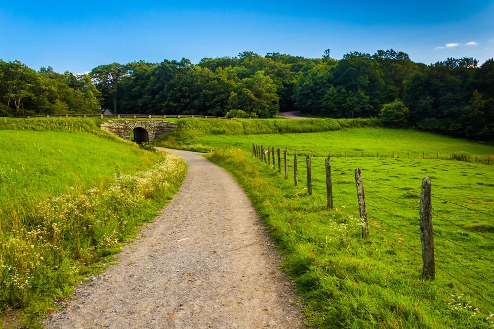 5 North Carolina Hikes Guaranteed to Inspire Your Creative Mind