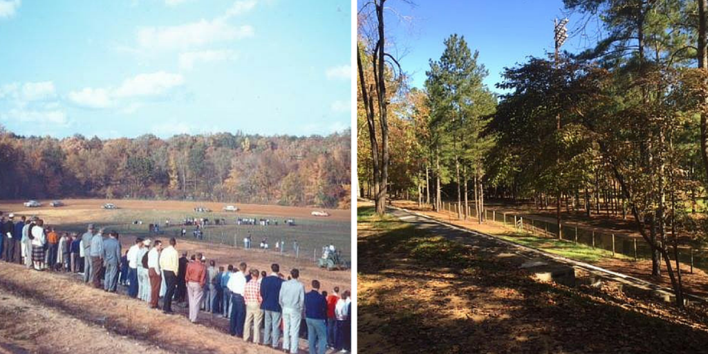 Where spectators once screamed over the roar of revving engines and crunching metal, the grandstand now offers a quiet spot to listen to rustling leaves and chirping birds.