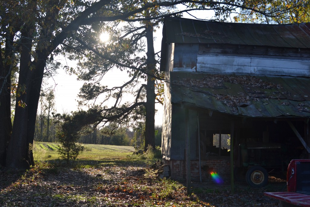 The weathered buildings of Brothers Farm symbolize the durability of North Carolina's agriculture industry.