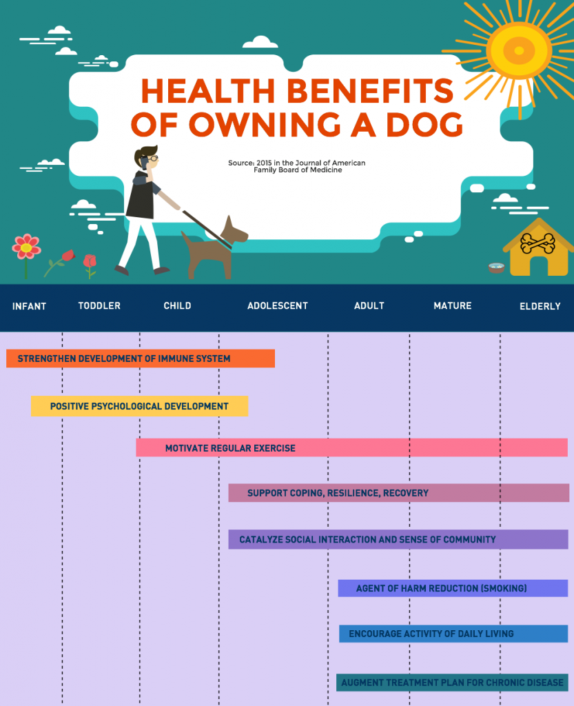 health-benefits-owning-a-dog