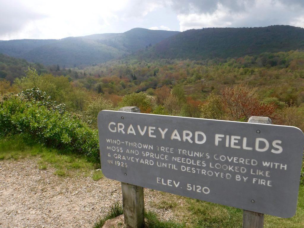 MST.GraveyardFields