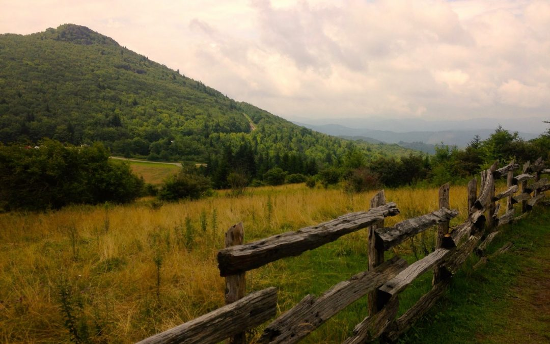 It's Mountains-to-Sea Trail Month! Celebrate with a hike