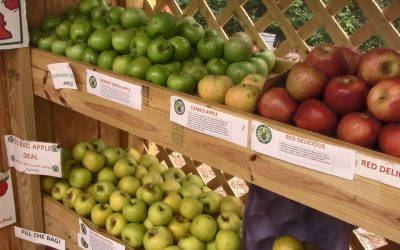 North Carolina Thrives on Fresh Fruits and Vegetables