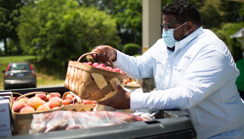 Man fills basket full of peaches at outdoor market