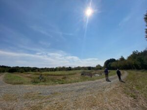 Wide-angle shot of an open hiking trail in a meadow, blue skies overhead