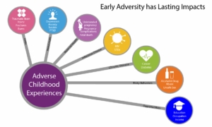 ACE consequences graphic connects ACEs with traumatic brain injury, depression/anxiety, unintended pregnancy, pregnancy complications, fetal death, HIV and STDs, cancer and diabetes, alcohol and drug abuse, unsafe sex, education, occupation, and income