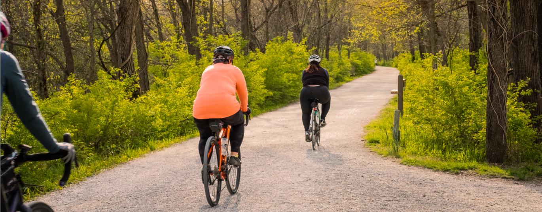 Three people ride bikes through a wooded biking trail