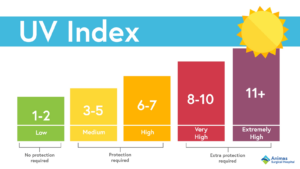 """UV index chart shows that the current UV index in NC is """"very high"""" and requires extra protection."""