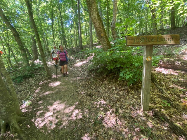 Hikers make their way down a trail in the forest